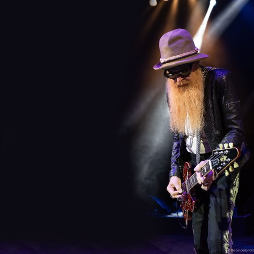 BILLY F GIBBONS THE BIG BAD BLUES